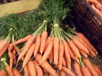 Store_veg_photos_019